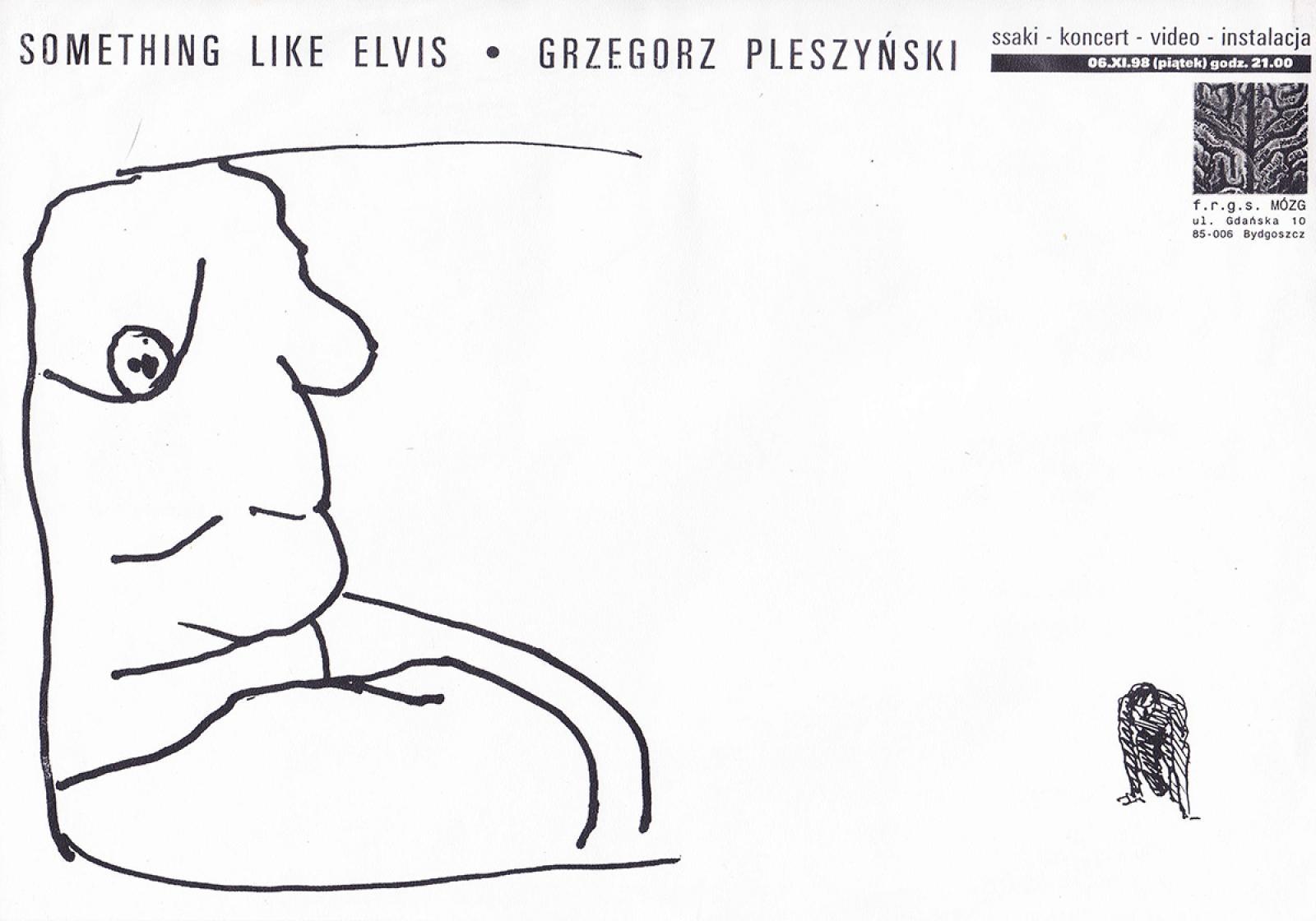 Something Like Elvis – koncert, Grzegorz Pleszyński - instalacja, performance