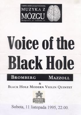 voice-of-the-black-hole-plakat.jpg
