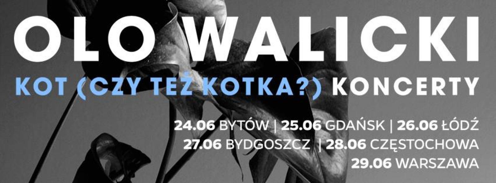 """OLO WALICKI/GABA KULKA/WACŁAW ZIMPEL/KUBA STARUSZKIEWICZ - """"Kot czy też kotka?"""" - koncert"""