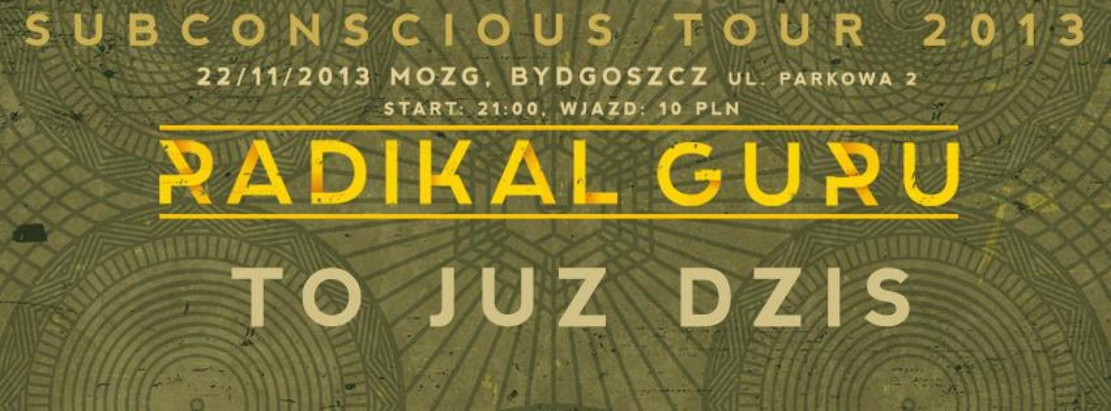 RADIKAL GURU - SUBCONSCIOUS TOUR 2013 x Feel Like Jumping Sound System x Track Numba1 x Ruff Puff