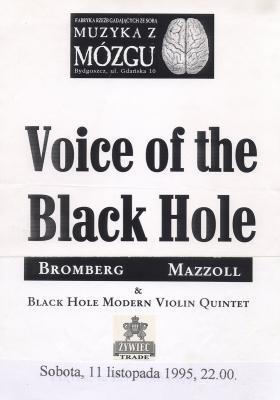 voice-of-the-black-hole-plakat.jpg
